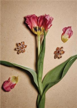 Bouquet of Jewels : Happy Mother'sDay