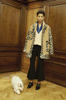 Modish Moggies: Fashion's Latest Muse