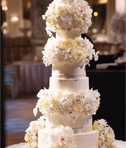Denise Kabbani… All about Wedding Cake & Sugar Flowers!